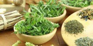 Какие травы от геморроя помогают лучше, чем лекарства